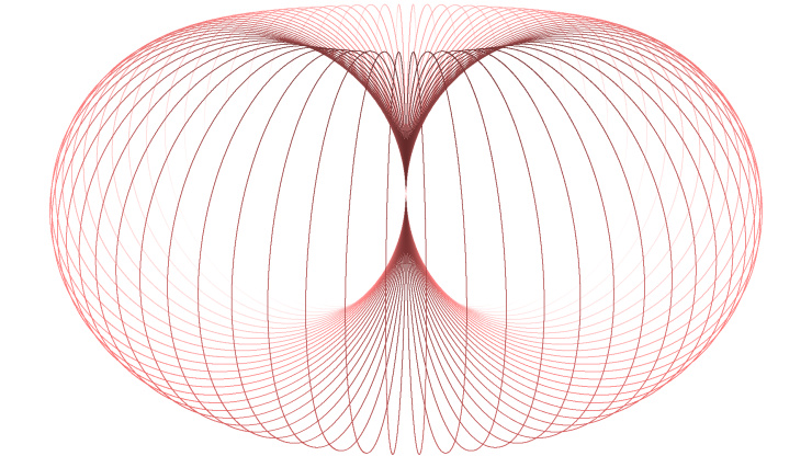 horn torus perspectively